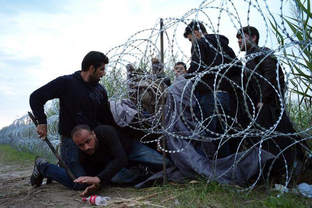 Refugiados-Hungria-Roszke-Bela-Szandelszky_EDIIMA20150826_0284_19